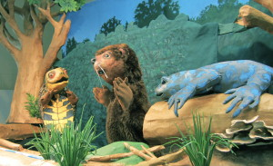 Nature Puppet Show @  |  |