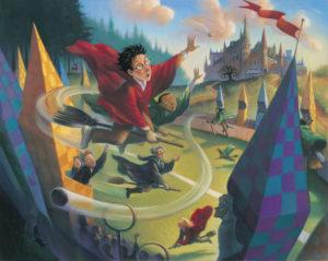 Quidditch Match @ Wayland Library | Wayland | Massachusetts | United States