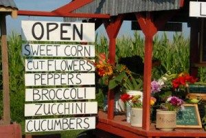 If You Ate Today, Thank a Farmer:  Wayland's Truck Farms and Roadside Stands @ Carriage House at Lee's Farm | Wayland | Massachusetts | United States