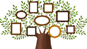 CANCELLED: Genealogy Group @ Council on Aging