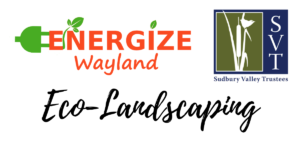 Eco-Landscaping Webinar with Energize Wayland and Sudbury Valley Trustees